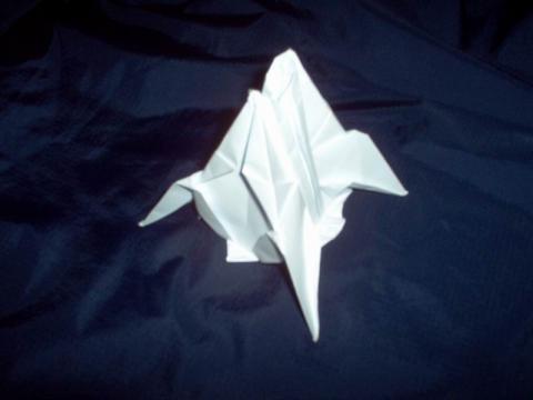 Trautsch Tímea: Űrhajó